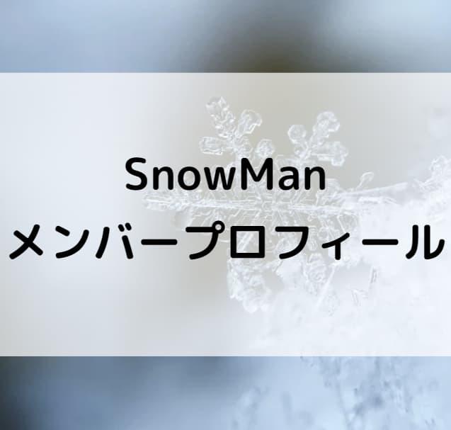 スノーマン解散決定